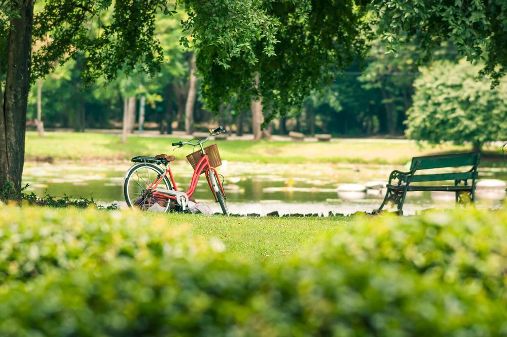 parks Cluj-Napoca
